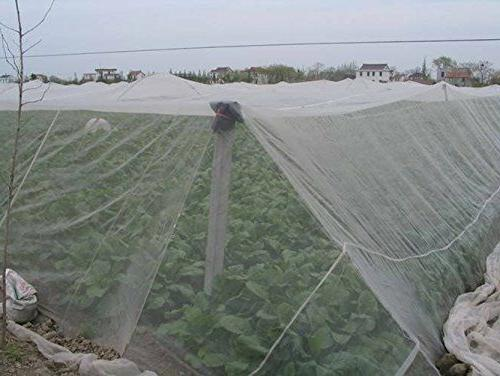 10x20ft mosquito netting insect barrier bird net