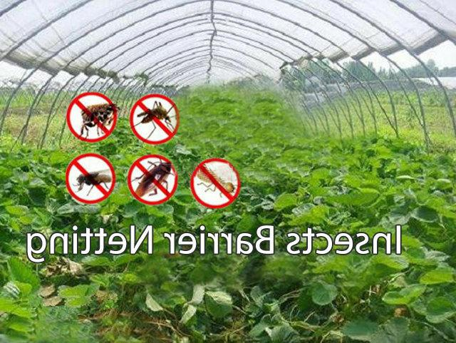 Agfabric Netting Bug Insect Bird Net Barrier