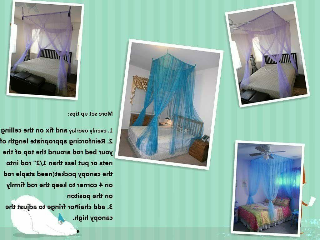 OctoRose or Mount Mosquito Net